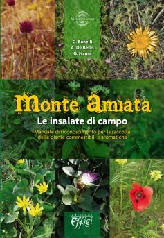 Monte Amiata · Le insalate di campo