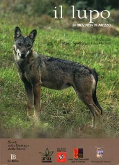 Il lupo in provincia di Arezzo
