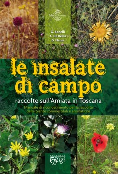 Le insalate di campo raccolte sull'Amiata in Toscana
