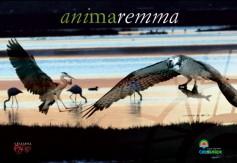 Animaremma