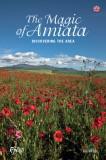 The Magic of Amiata